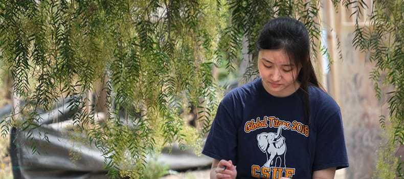 Decorative stock image of cal state fullerton student at the arboretum
